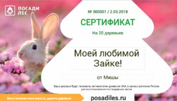 На 8 марта можно подарить лес