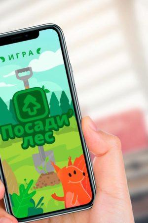 Россиян призывают поддержать создание мобильной игры для восстановления лесов