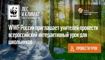 К интерактивному уроку WWF «Лес и климат» присоединились 5 тысяч учителей России