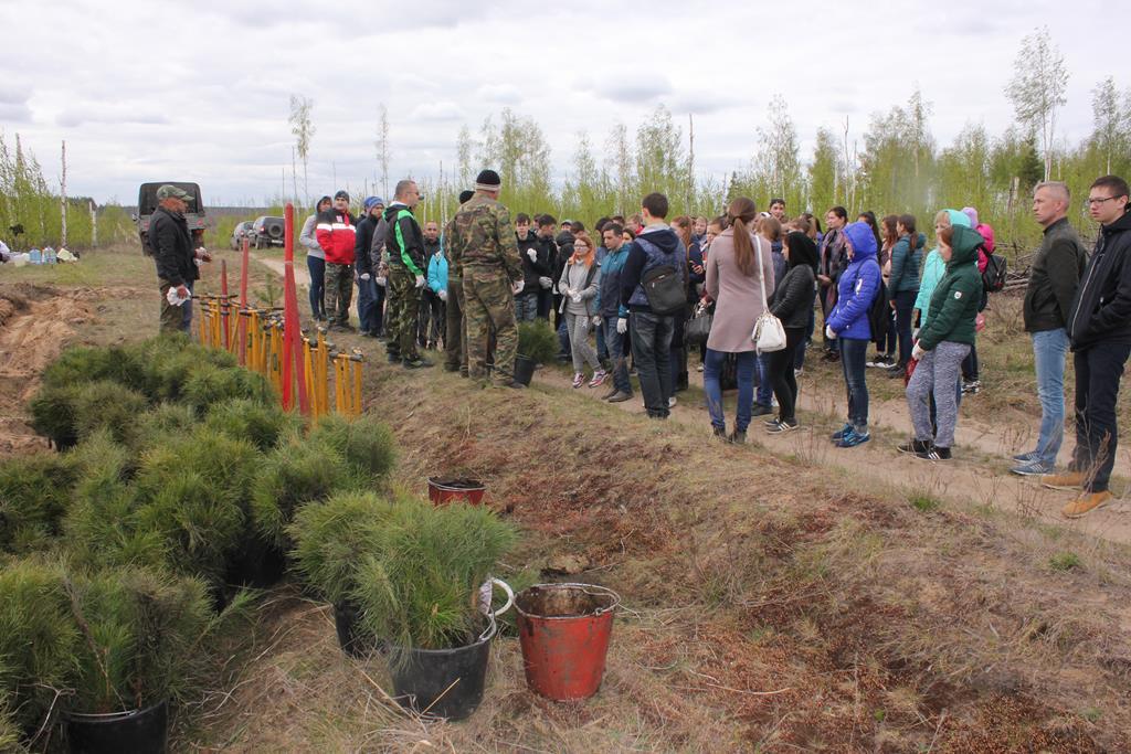 Движение ЭКА объявляет сбор волонтеров на посадки деревьев
