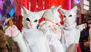«Город зимы»наВДНХв день открытия принял тысячи гостей