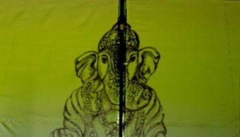 Презентация эскиза спектакля «Я-Слон!»