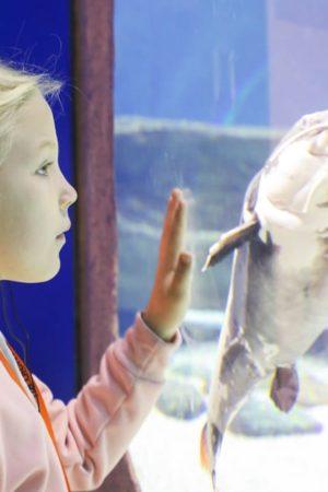 Дети-герои посетили «Москвариум» на ВДНХ