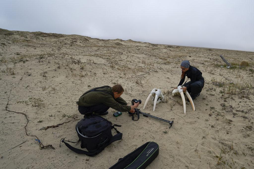 Вся правда об арктической экспедиции 27 февраля