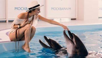 «Москвариум» на ВДНХ приглашает совершить незабываемое путешествие по Мировому океану