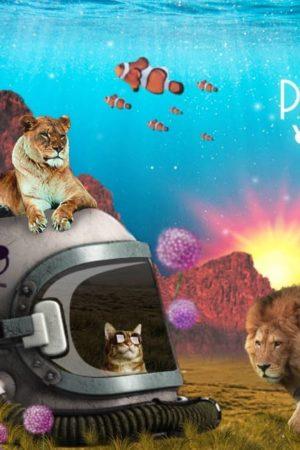SpaceTime DJs